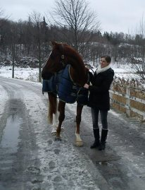 Jag är så trött på att stå på marken bredvid min fina häst!