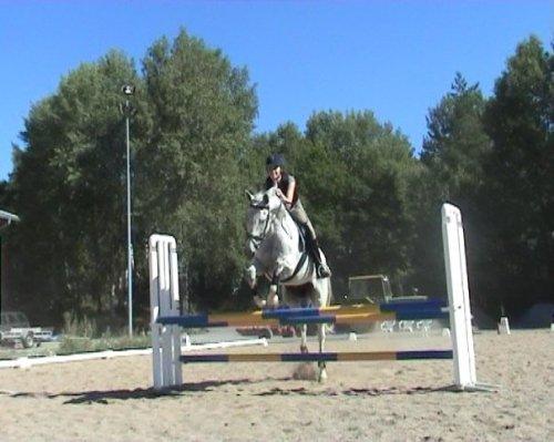 PH hoppar
