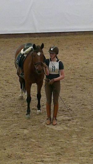 Två helt olika hästar dressyrrridna...